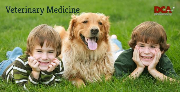 page-banner-vet-medicine